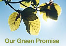 Our Green Promise